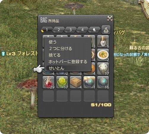 Ffxiv_20131219_3